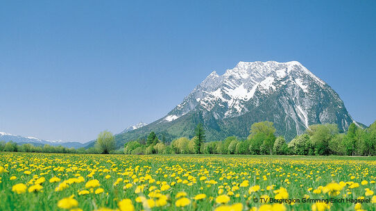 Mount Grimming in spring
